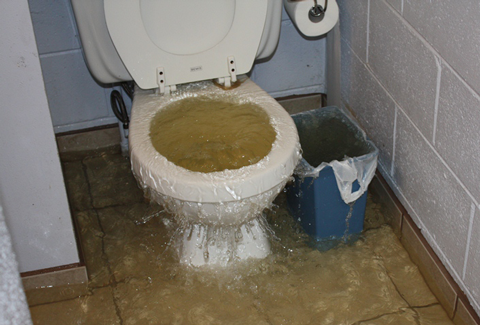 Toilet Water Overflow Cleanup Macomb Select Restoration