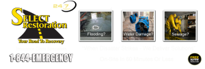 Water Damage Cleanup Services In Michigan